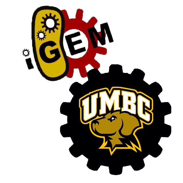 Team umbc maryland igem. Notebook clipart contents page