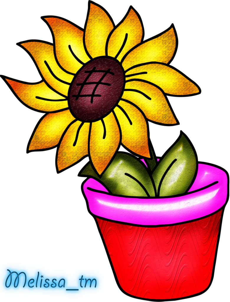 Pink clipart sunflower. In a vase png