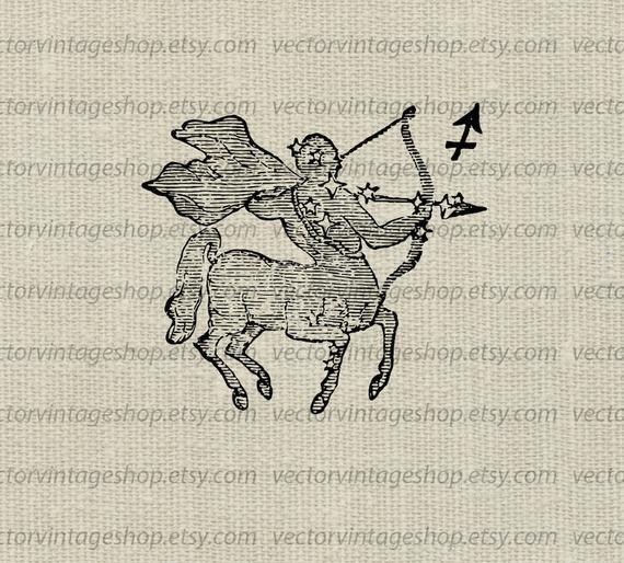 Sagittarius vector astrology sign. November clipart symbol
