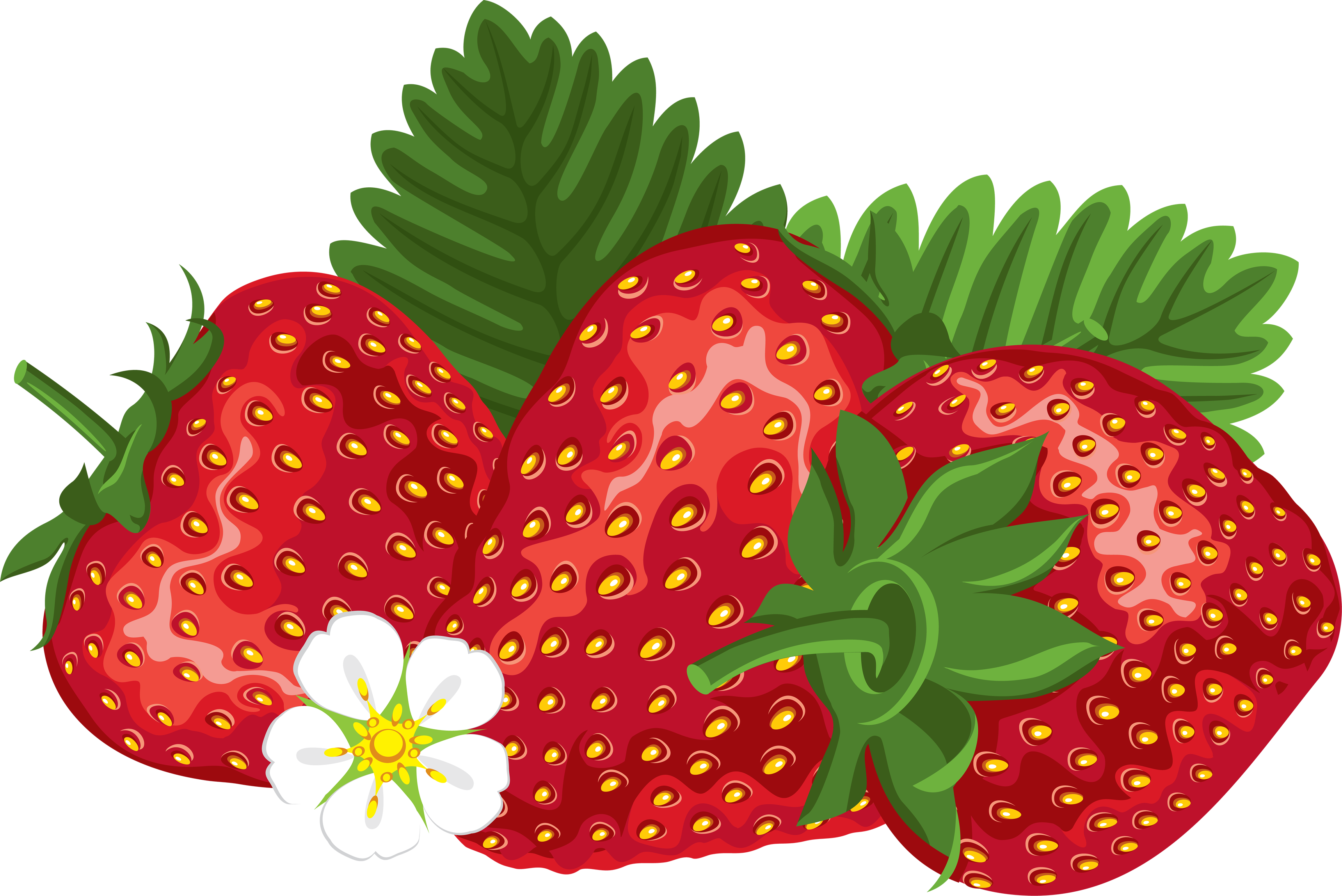 strawberries clipart four #144462936