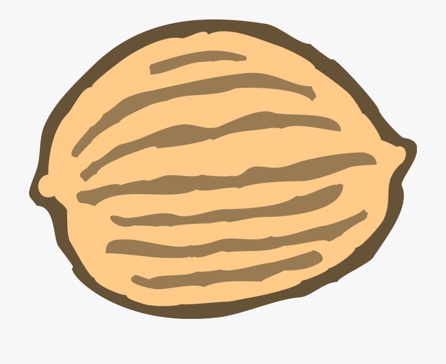Nut clipart. Clip art free cliparts