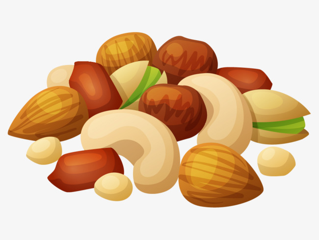 Hand painted nuts cartoon. Nut clipart