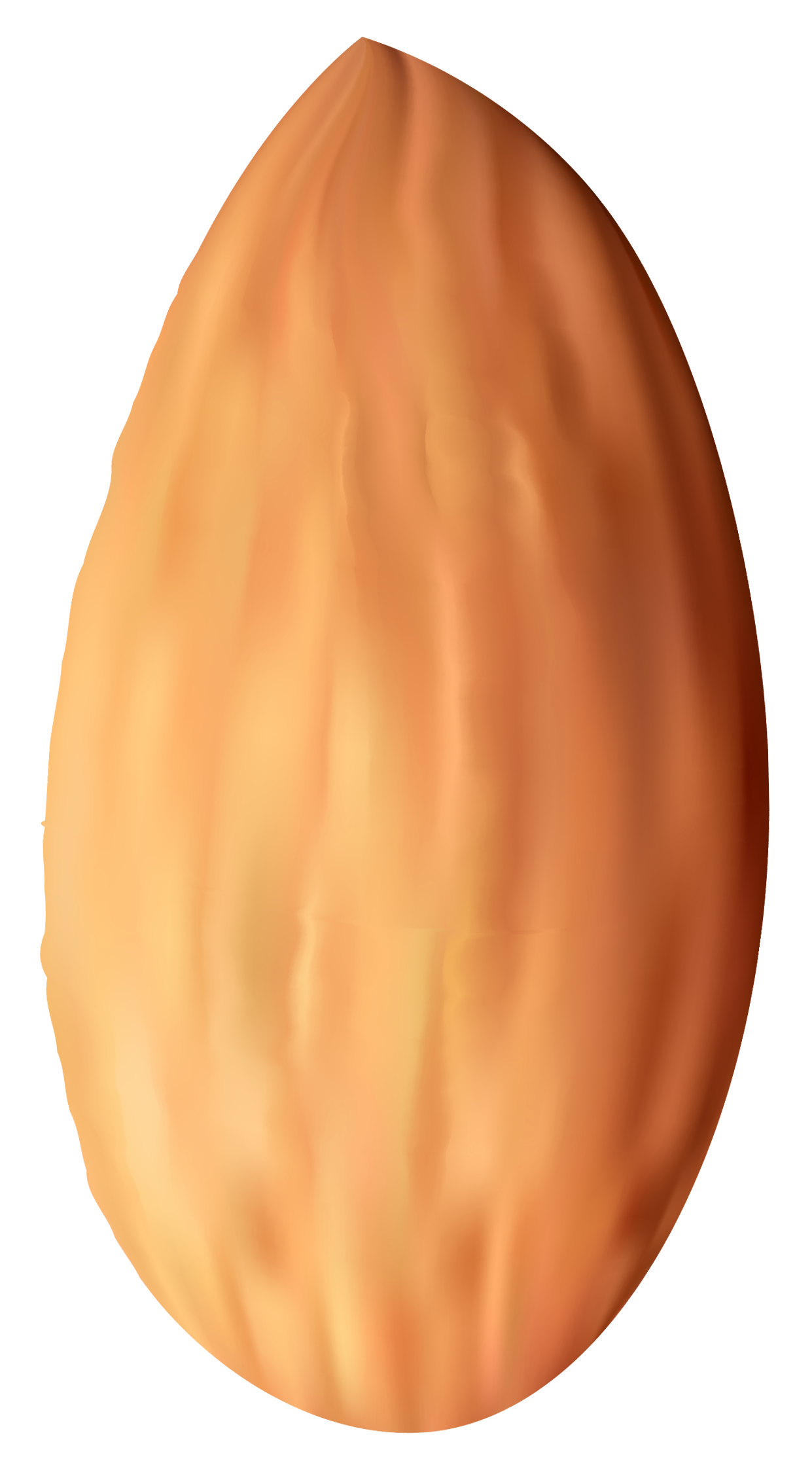 Almond nut png best. Clipart eyes orange