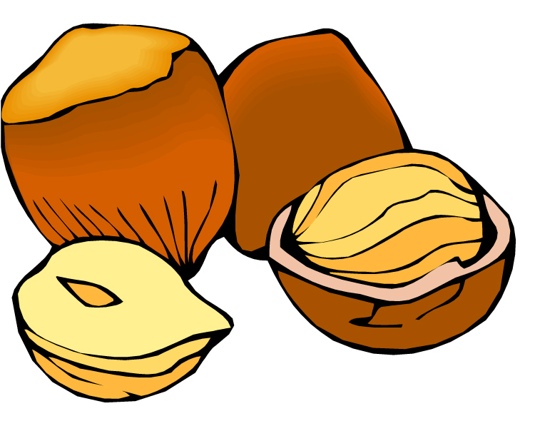 Free cliparts download clip. Nut clipart