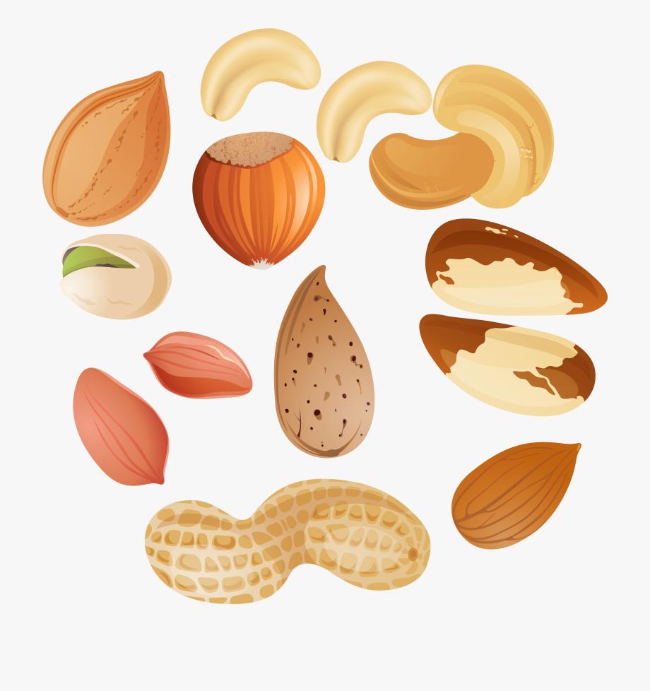 Nuts png clipar image. Nut clipart