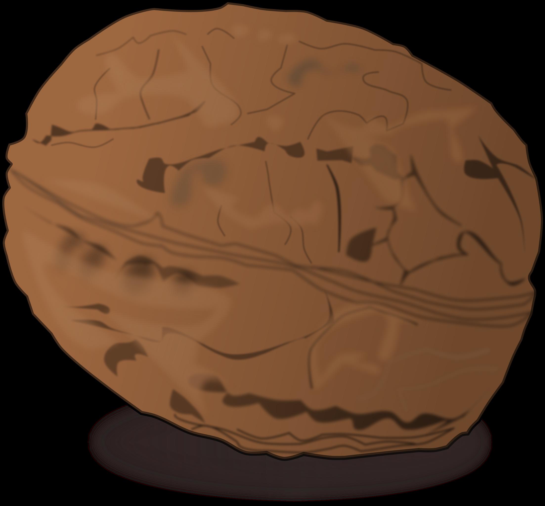 Shaded walnut big image. Nut clipart art