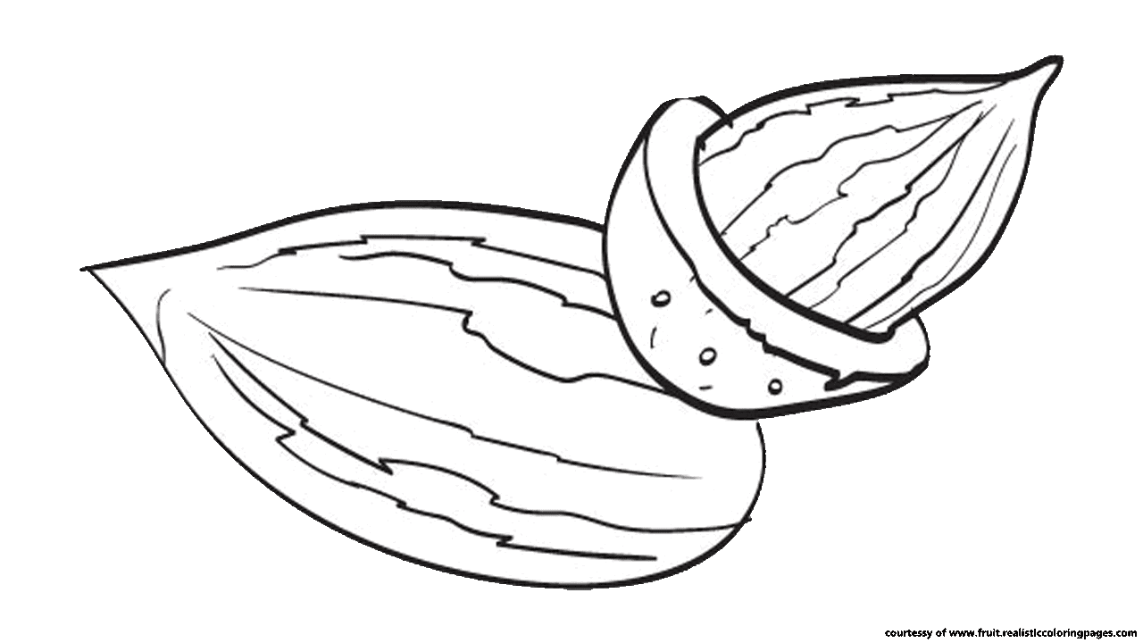 Nut clipart black and white.  almond free to