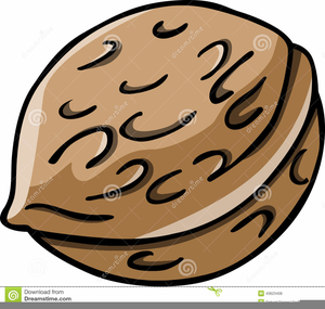 Animated free images at. Nut clipart cartoon