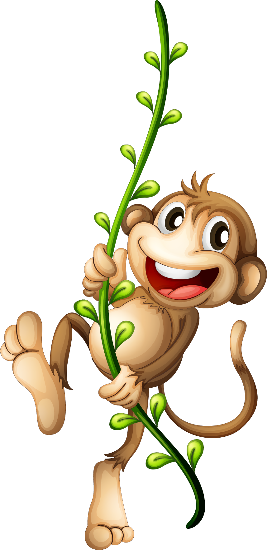Nut clipart cartoon monkey. Png transparent free images