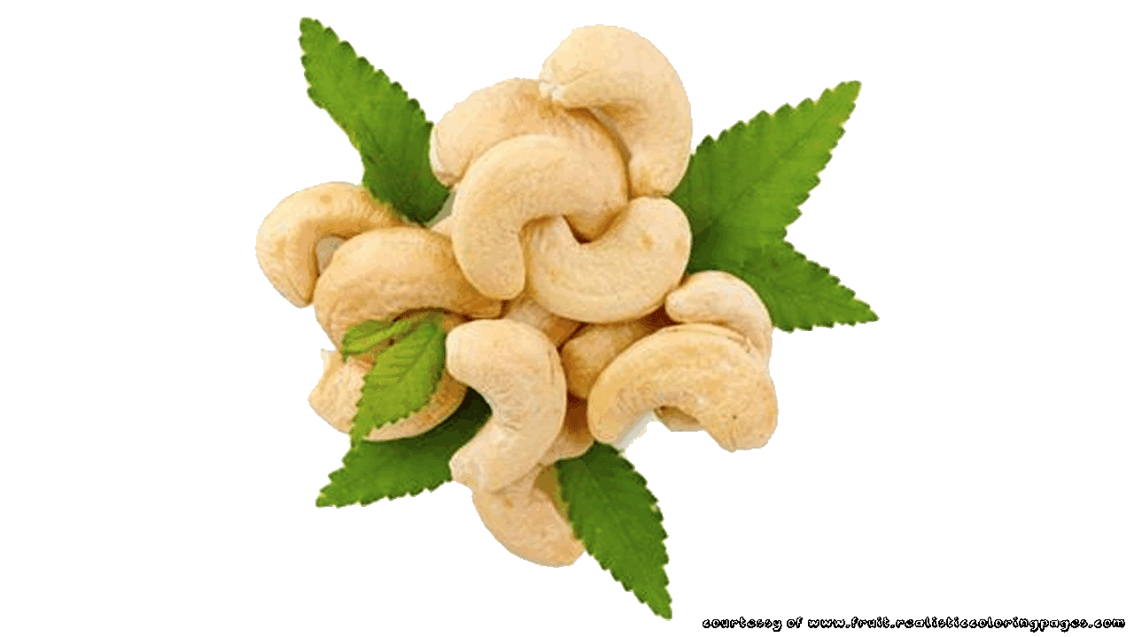 Nut clipart cashew nut.  free marvelous fruit