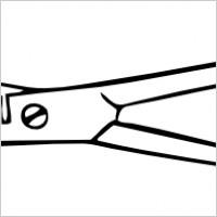 Thinning shears clip art. Nut clipart cutter