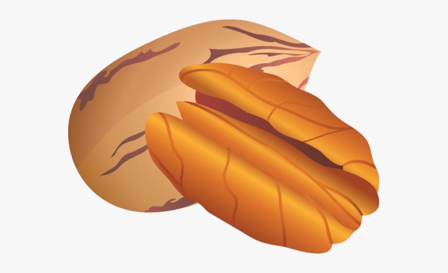 Clip art pecan nuts. Nut clipart hindi