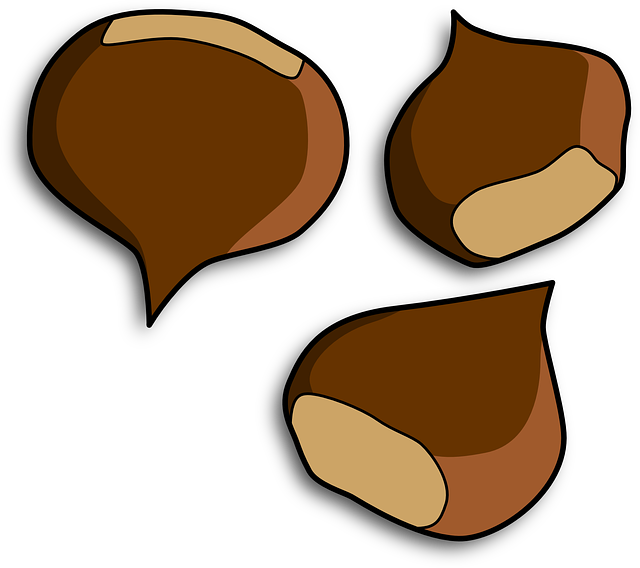 Free photo nuts protein. Nut clipart macadamia nut