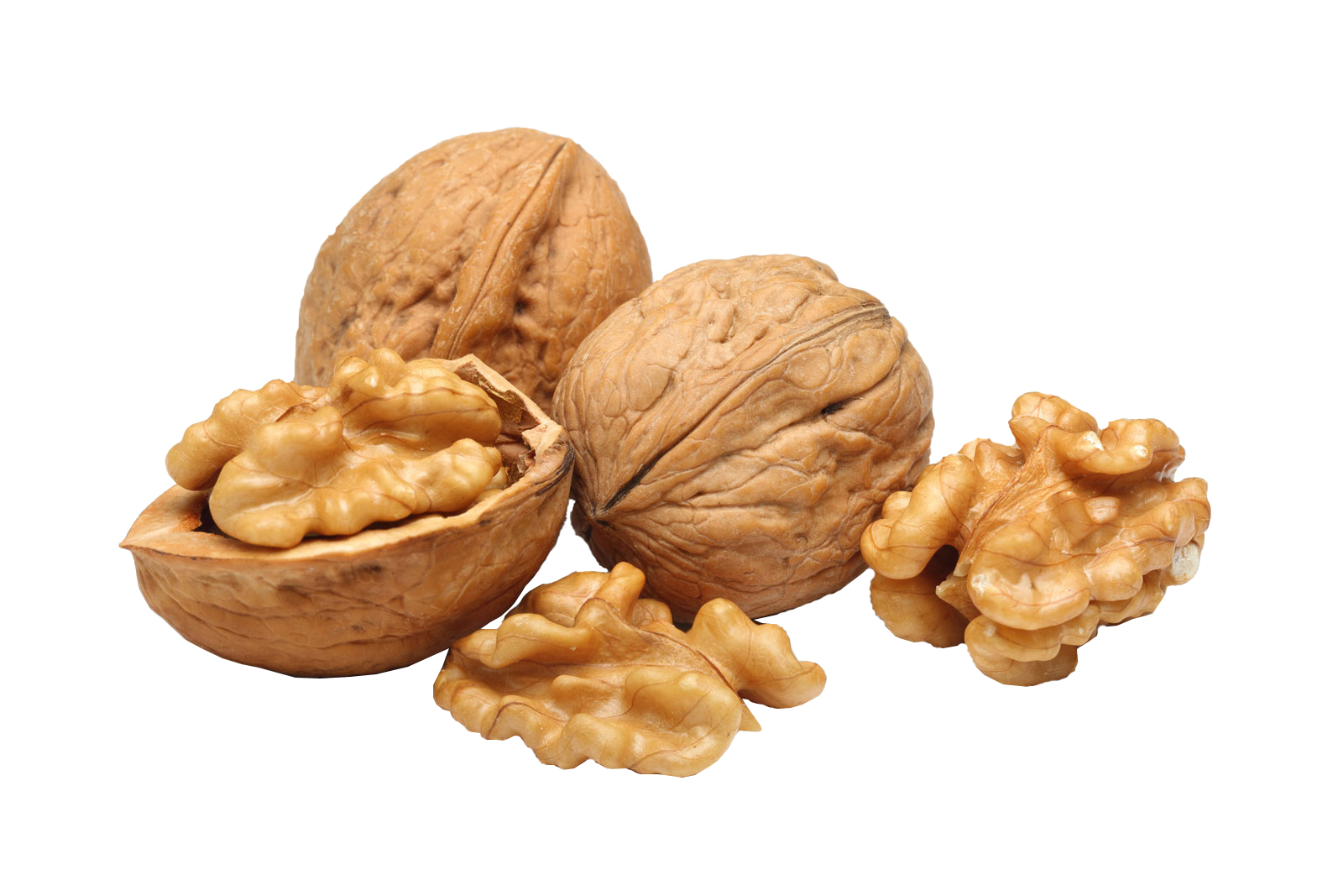 Walnut png image purepng. Peanuts clipart transparent background