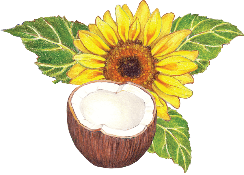 Organic Sun Coco Oil