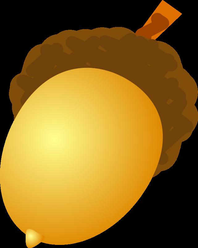 Hazelnut group acorn . Nut clipart state oregon