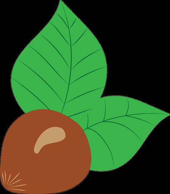 Nut clipart state oregon. Hazelnut group free photo