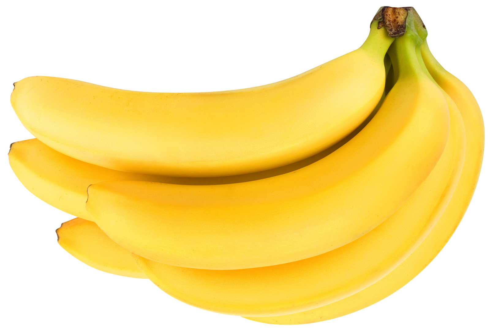 Nutrition clipart banana. Everything about roland garros