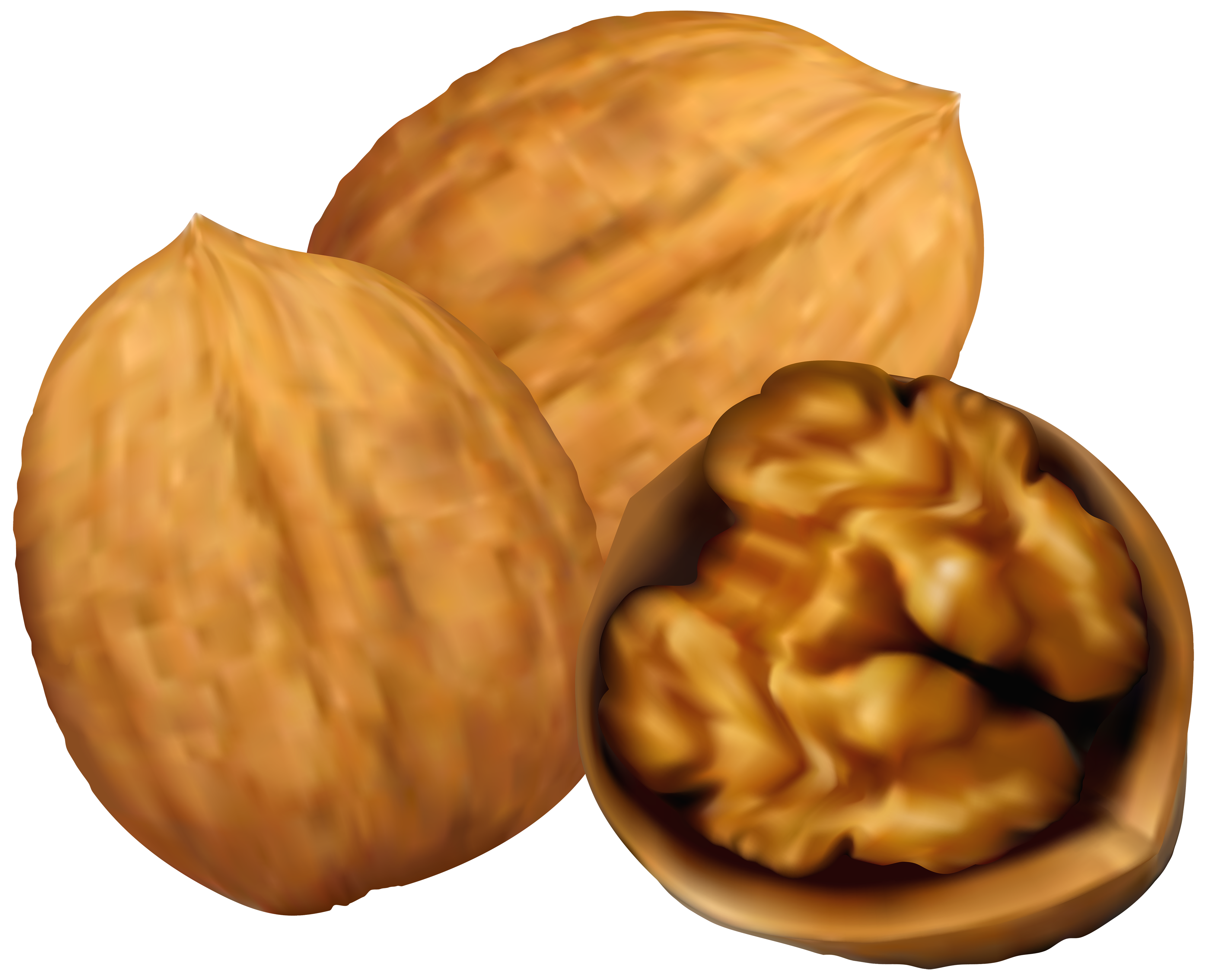 Grains clipart nuts. Walnuts png clip art