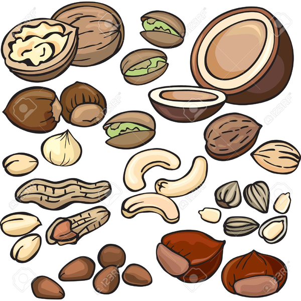 Free nuts images at. Nut clipart raw