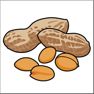 Nut clipart art. Nuts free download best