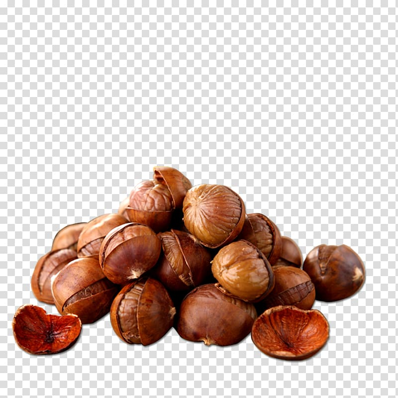 Nuts clipart pile. Of macadamia chinese chestnut