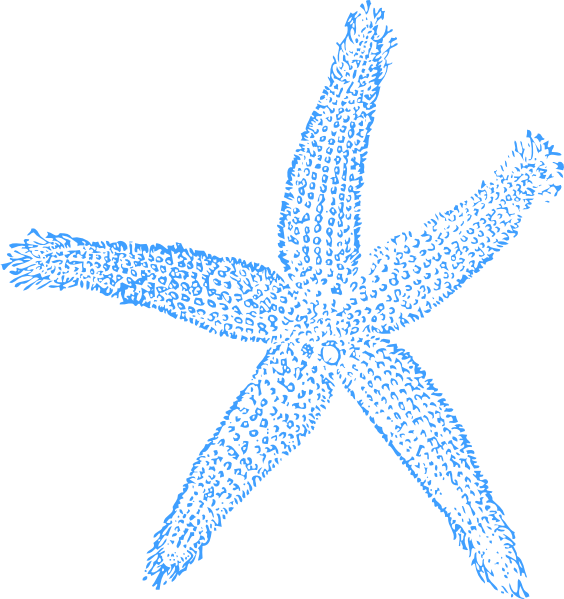 Blue Starfish Clip Art at Clker