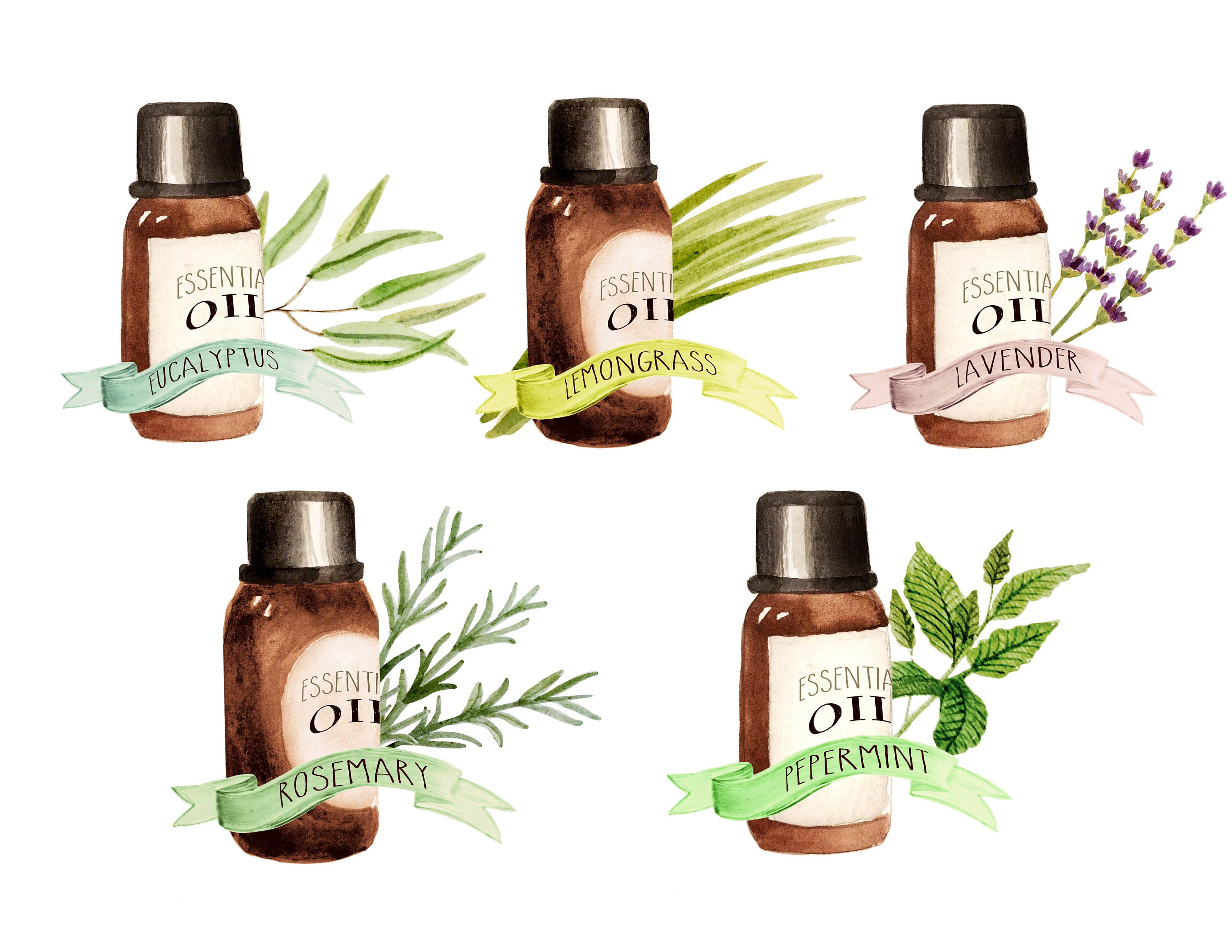 Oil clipart essential oil. Free oils cliparts download