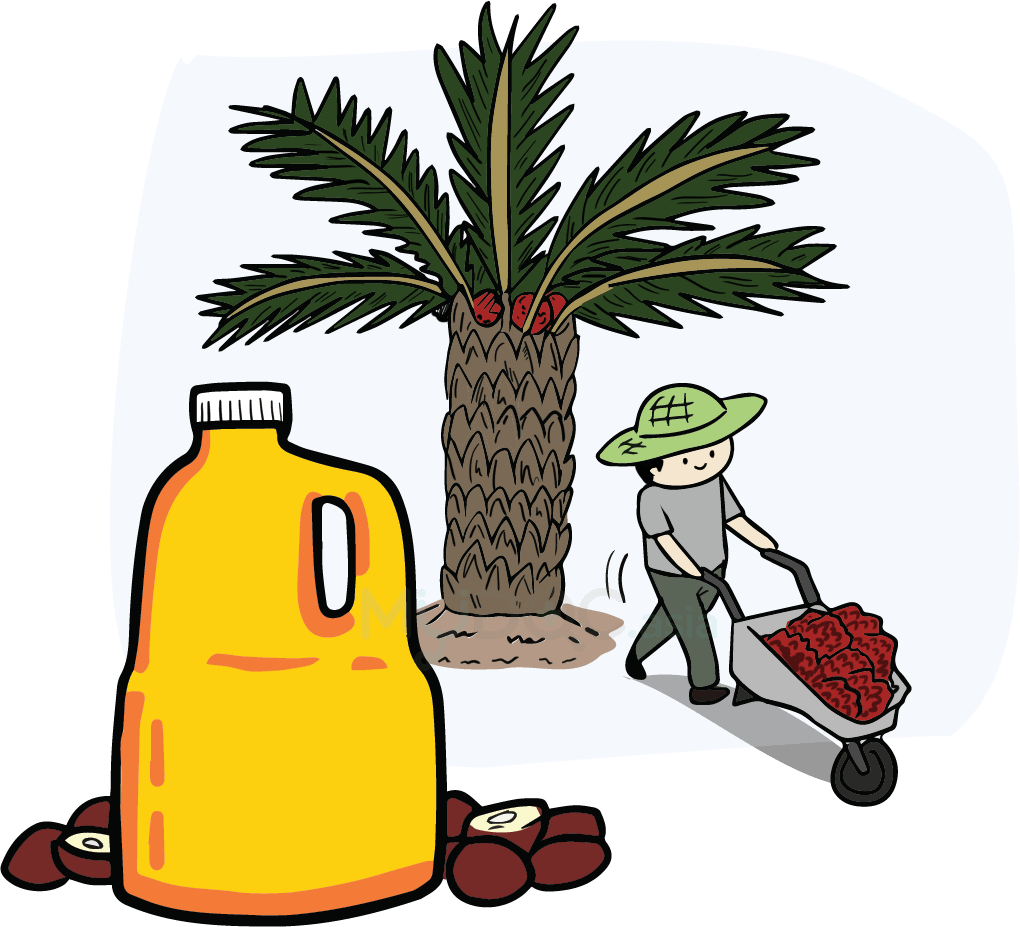 Oil clipart health. Types of cooking their