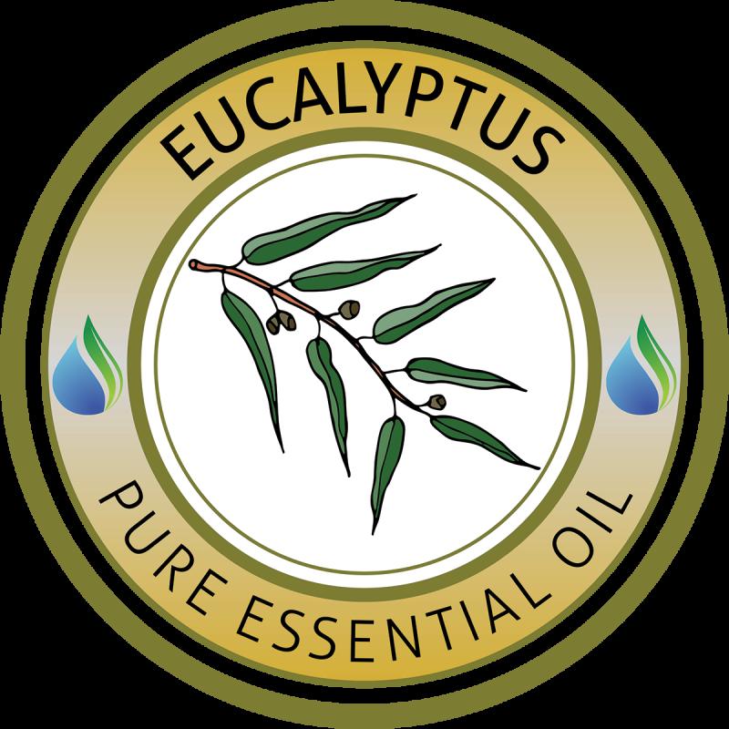 Oil clipart lavender oil. Eucalyptus essential oils supplies