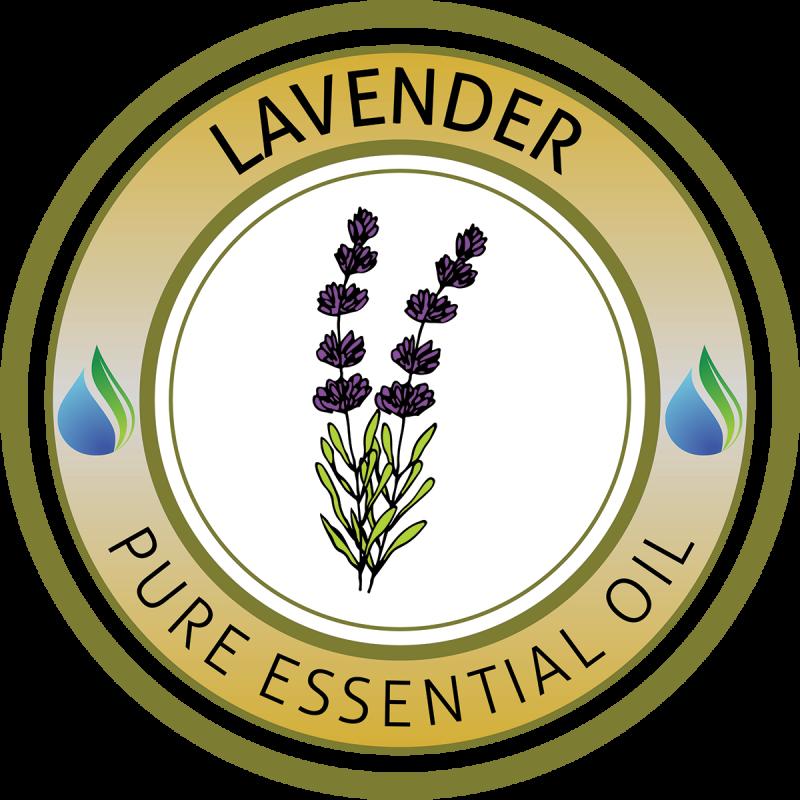 Essential oils supplies usa. Oil clipart lavender oil