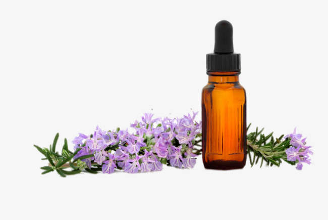 Spa essential png . Oil clipart lavender oil
