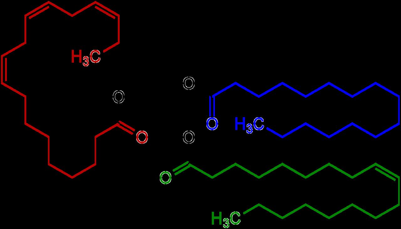 oil clipart lipid #133175035