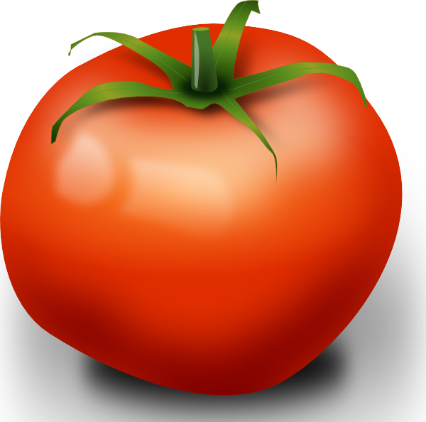 Outline clipart tomato. Pinterest outlines and clip