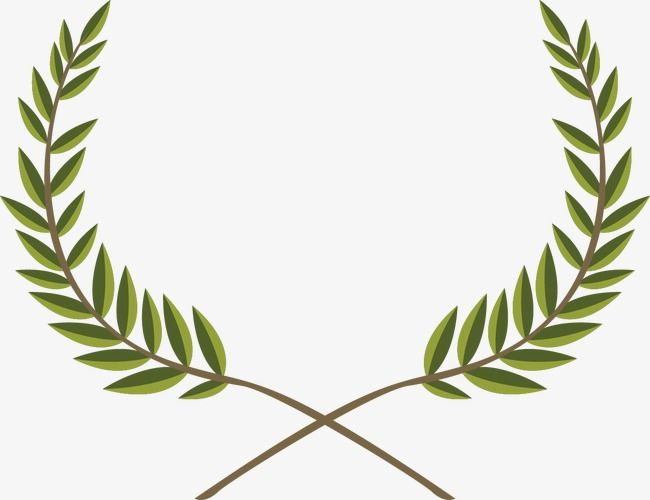 Branch decoration . Olive clipart vector