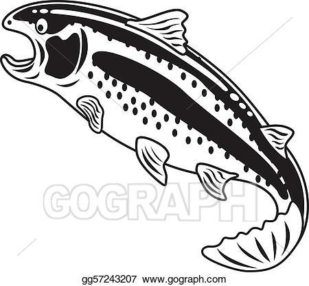 Vector rainbow trout color. One clipart clip art
