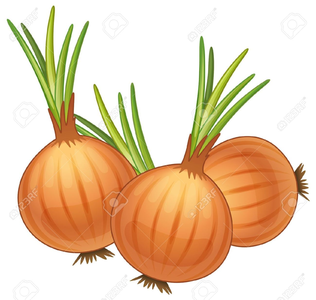 Animated pencil and in. Onion clipart