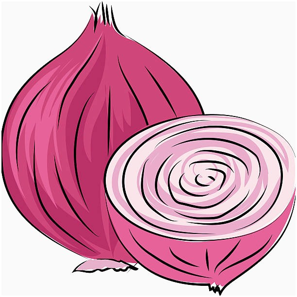 Black and white beautiful. Onion clipart