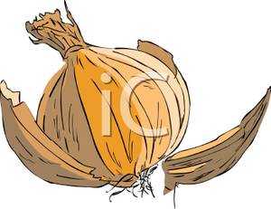 With peeling skin royalty. Onion clipart onion peel