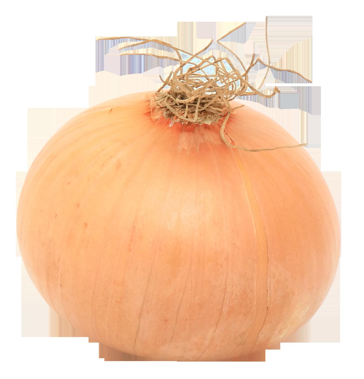 Onion clipart onion peel. Png images pngpix image