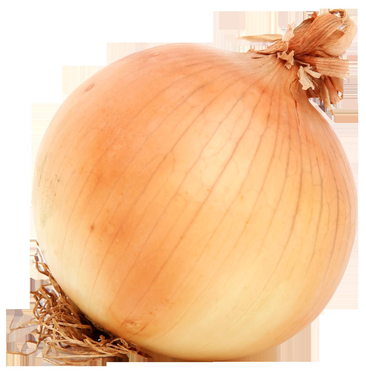 Onion clipart onion peel. Png images pngpix brown