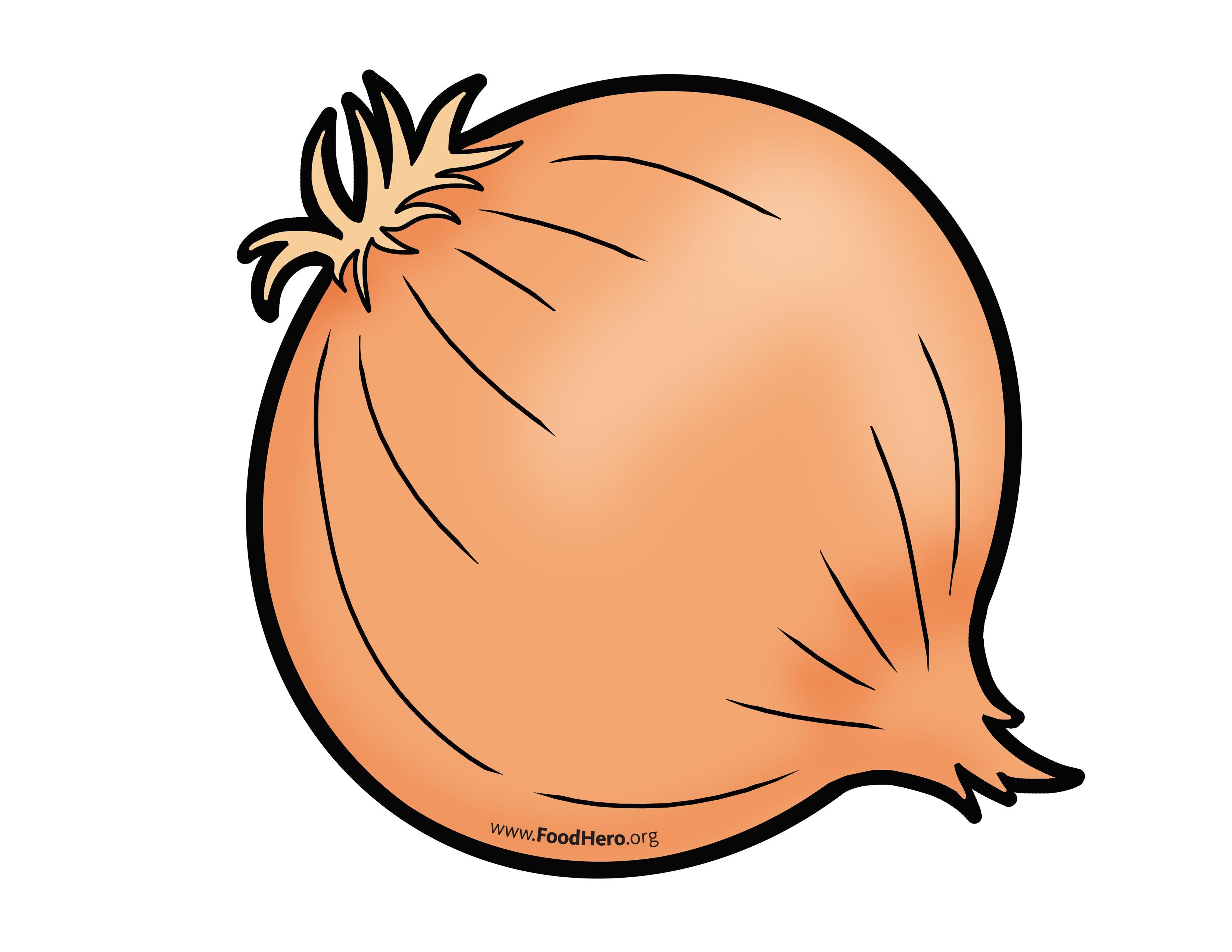 Illustration foodhero bullentinboards schoolart. Onion clipart onion peel