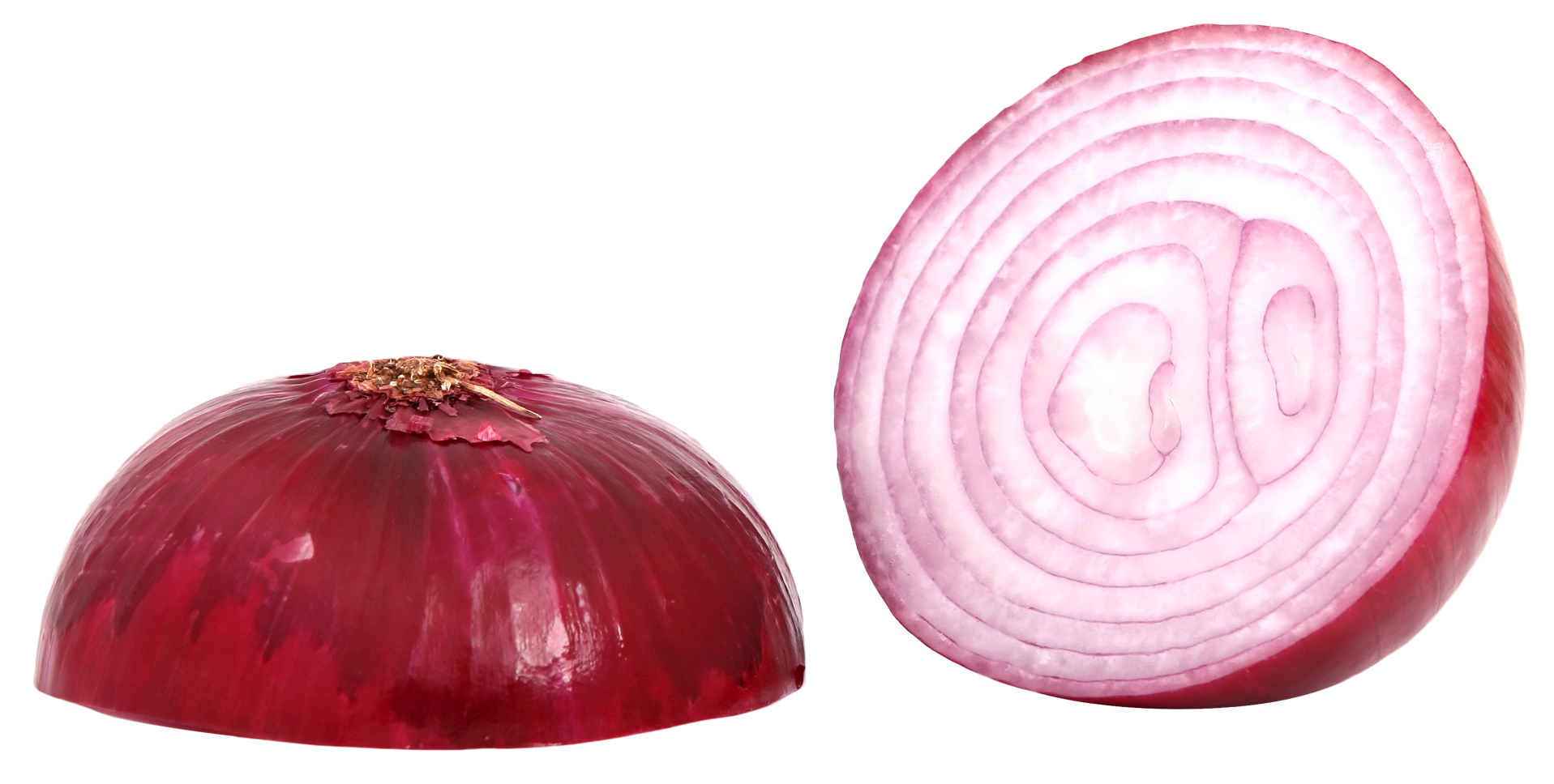 Red sliced png image. Onion clipart onion slice