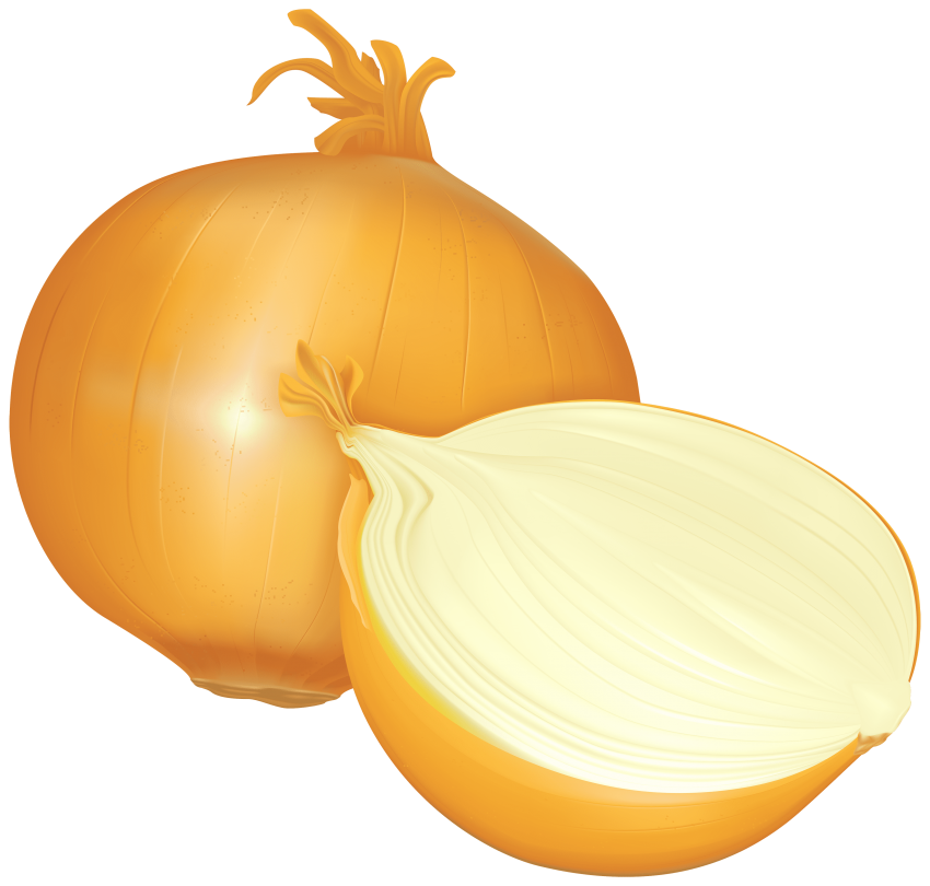 Onion clipart onion slice. Png free images toppng