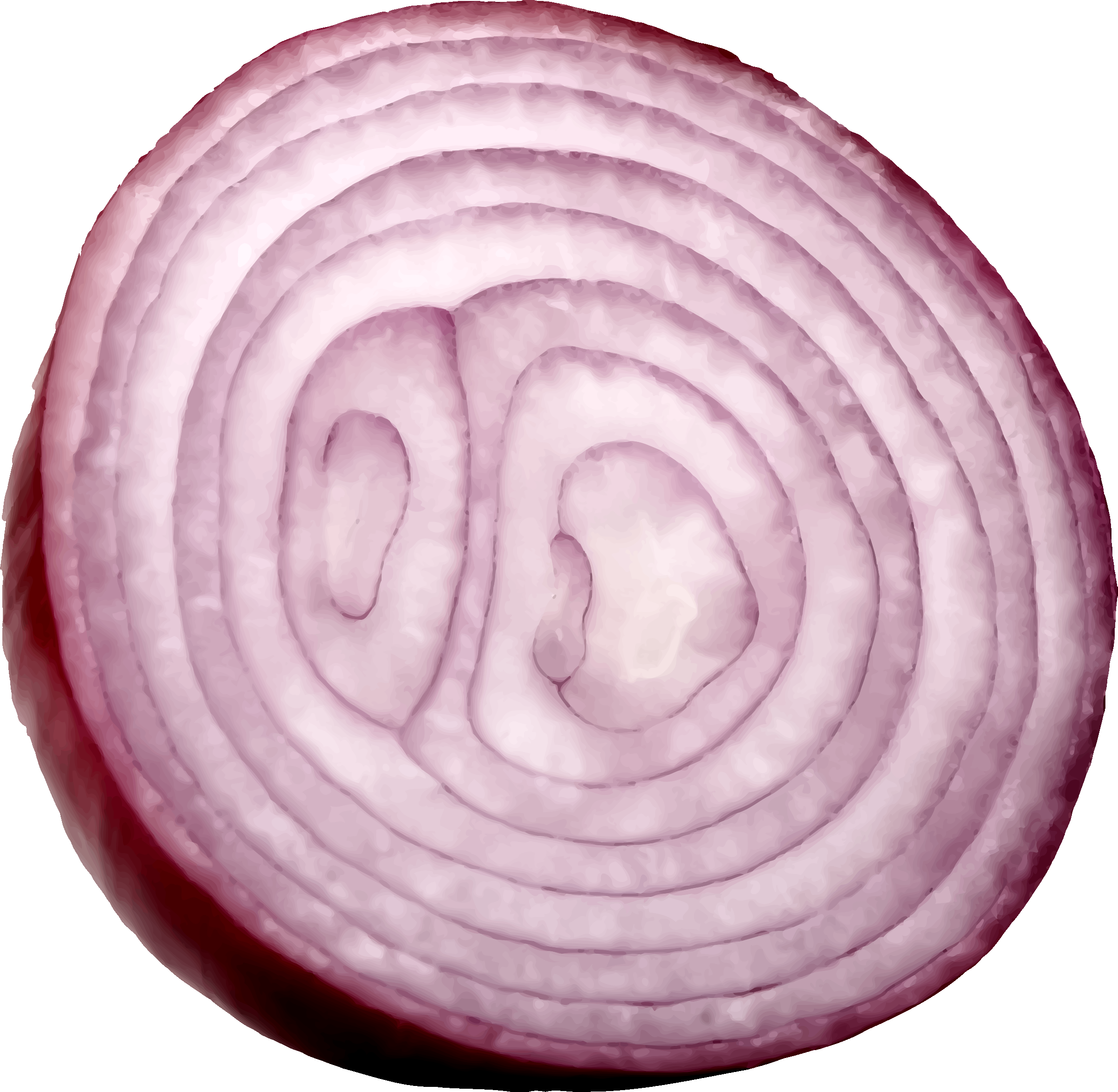 Cut big image png. Onion clipart red onion