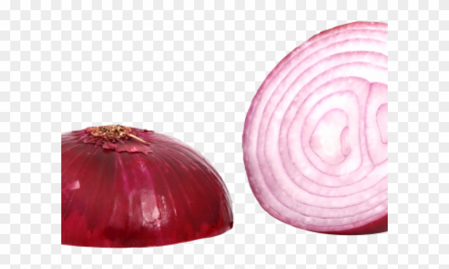 Red png transparent . Onion clipart sliced onion