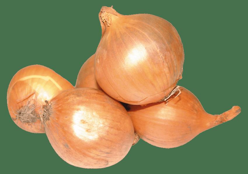 Onion transparent background