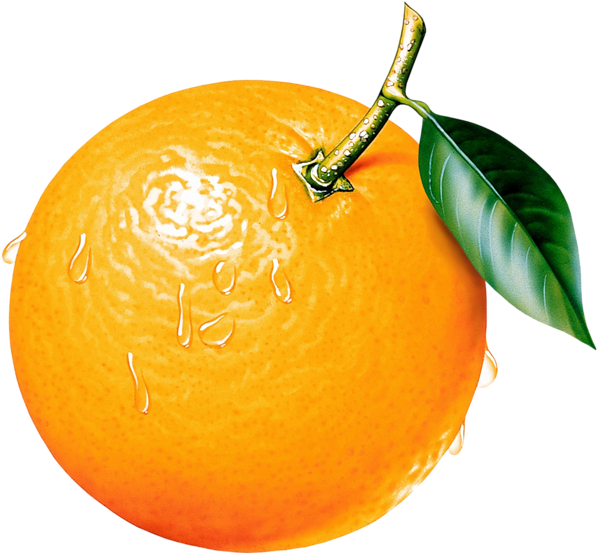 Orange clipart. Picture ovocie fruit pinterest