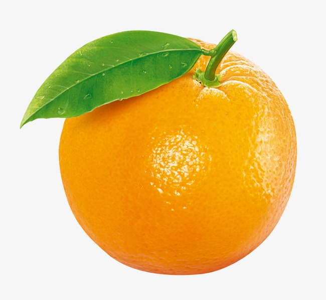 Orange clipart. Fruit png image and