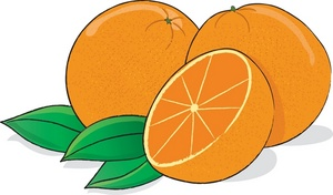 Oranges clipart. Orange clip art free